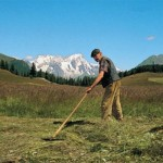 agricoltura in montagna